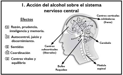 Las horas de clase por el alcoholismo